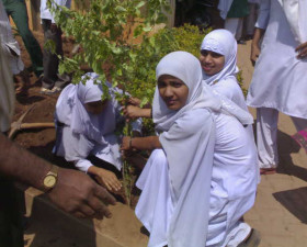 Plantation-program-Dharwad